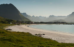 Norwegian beach in Lofoten Royalty Free Stock Photo