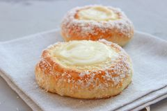Norwegian buns-Skoleboller. These are Norwegian yeast rolls with baked custard, icing sugar and coconut flakes stock photos