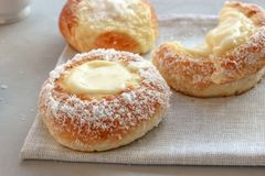 Norwegian buns-Skoleboller. These are Norwegian yeast rolls with baked custard, icing sugar and coconut flakes royalty free stock image