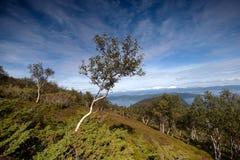 Norwegian coast Landscape Royalty Free Stock Photos