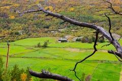 Norwegian Countryside Stock Images