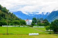 Norwegian Countryside Stock Image