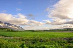 Norwegian Countryside. Seven sisters mountain range in Sandnessjøen, Norway Stock Photography