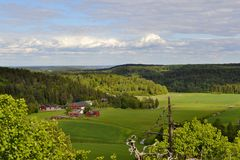 Norwegian farm. A small farm in Andebu, Vestfold, Norway Royalty Free Stock Photo