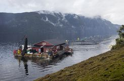 Norwegian fish farm Stock Photography