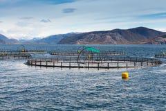 Norwegian fish farm for salmon growing. In open sea water Royalty Free Stock Image