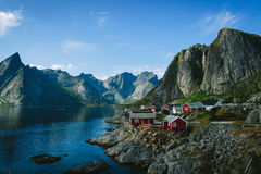 Norwegian fishermens cabins at a lake shore with fjords on the background. Traditional norwegian fishermens cabins in, a small town in Lofoten during summer Royalty Free Stock Image