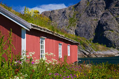 Norwegian fishing hut Royalty Free Stock Photo