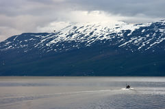 Norwegian fjord Royalty Free Stock Image