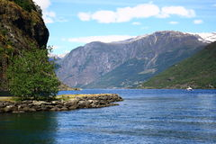 Norwegian fjord. Norway. Sognefjord - a beautiful place for tourism Royalty Free Stock Image