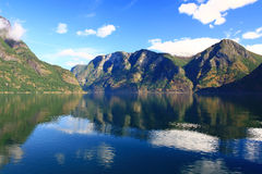 Norwegian fjord. Norway. Sognefjord - a beautiful place for tourism Stock Image
