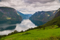 Norwegian fjord in cloudy weather Royalty Free Stock Photography