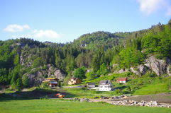 Norwegian fjord landscape. View of residential area in Norway accompanied by blue sky stock images