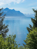 Norwegian Fjord and Mountain Stock Images