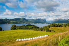 Norwegian fjord and mountains Lysefjord, Norway. stock photos