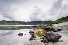 Norwegian fjord Stock Image