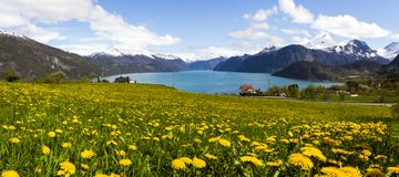 Norwegian Fjord in Sunnmore Royalty Free Stock Images