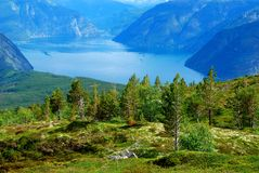 Norwegian fjords and forests Stock Images