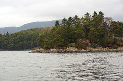 Norwegian fjords and mountains. Rocky shore, waves and trees Stock Images