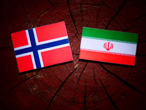 Norwegian flag with Iranian flag on a tree stump isolated Royalty Free Stock Image