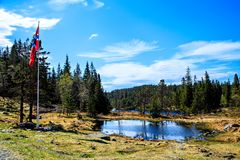 Free Norwegian Flag On Flagstaff At Road In Forest Royalty Free Stock Photos - 46409158
