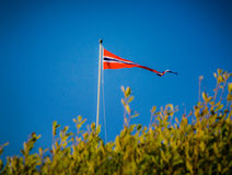 The Norwegian flag. Norwegian pennant in the wind with green leaves in front royalty free stock photos
