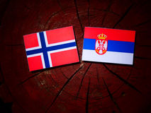 Norwegian flag with Serbian flag on a tree stump isolated. Norwegian flag with Serbian flag on a tree stump royalty free stock photography