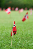 Norwegian flags in a garden Royalty Free Stock Image