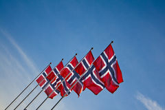Norwegian flags during the summer Royalty Free Stock Image