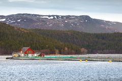 Norwegian floating fish farm with red wooden house Royalty Free Stock Photo