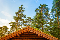 Norwegian house with grass roof Royalty Free Stock Photo