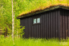 Norwegian house with grass roof Royalty Free Stock Images
