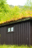 Norwegian house with grass roof Royalty Free Stock Photography