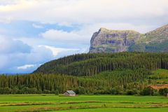 Norwegian landscape. Royalty Free Stock Images