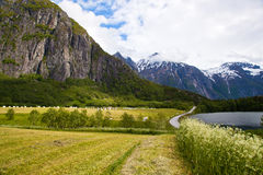 Norwegian landscape Stock Images