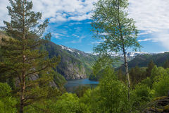 Norwegian landscape Stock Photos
