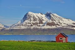 Norwegian landscape with a typical red house Royalty Free Stock Photos