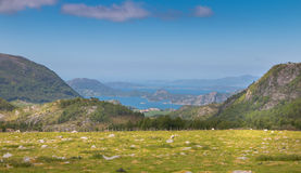 Norwegian meadow and fjord Royalty Free Stock Image