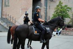 Norwegian mounted police Stock Image