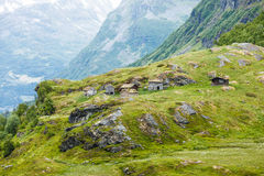 Norwegian old country houses in mountains. Royalty Free Stock Image