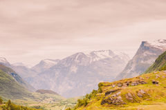 Norwegian old country houses in mountains. Royalty Free Stock Photo