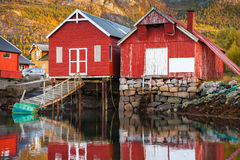 Norwegian red wooden fishing barns. Traditional Norwegian red wooden fishing barns stand on the sea coast. Snillfjord, Sor-Trondelag region, Vingvagen fishing Royalty Free Stock Image