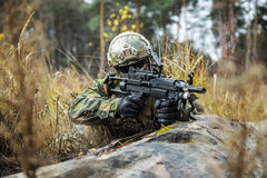 Norwegian soldier in the forest Royalty Free Stock Image