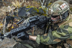 Norwegian soldier in the forest Stock Images