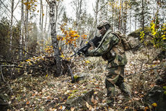Norwegian soldier in the forest Stock Image