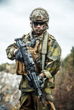 Norwegian soldier in the forest Royalty Free Stock Photo