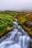 Norwegian stream Stock Photos