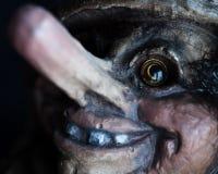 Norwegian troll close-up. Portrait Stock Photos