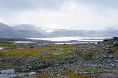 Norwegian View Royalty Free Stock Photography