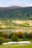 Norwegian View Stock Photo